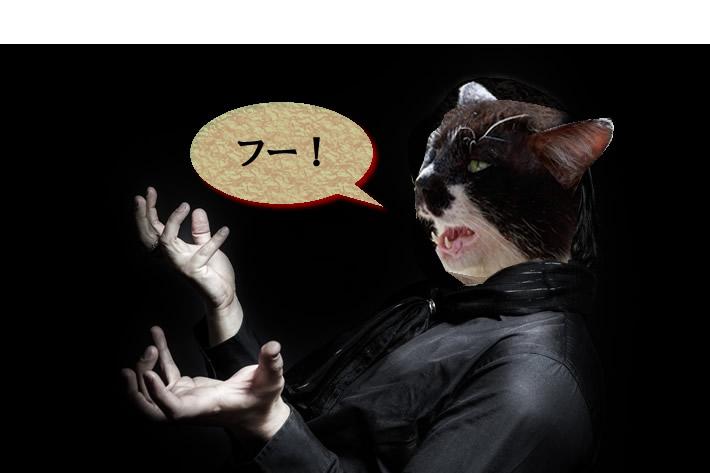 ネココラ悪夢