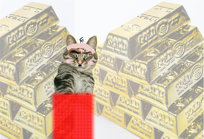 Cat collage of richman