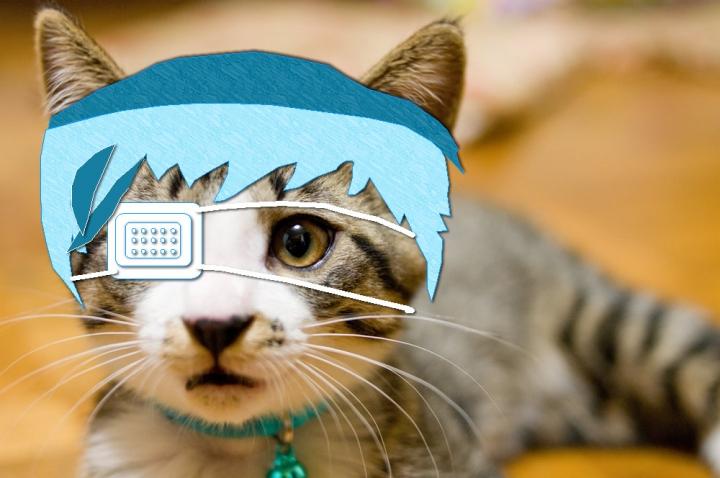 time-travel-sense Japan Cat kollage