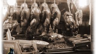 Roast pork cat collage