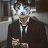 Cat collage reporter